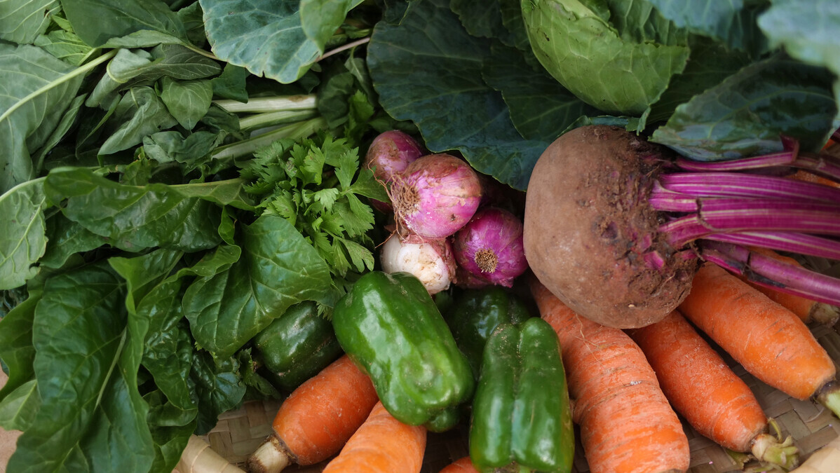 Collection of colourful vegetables