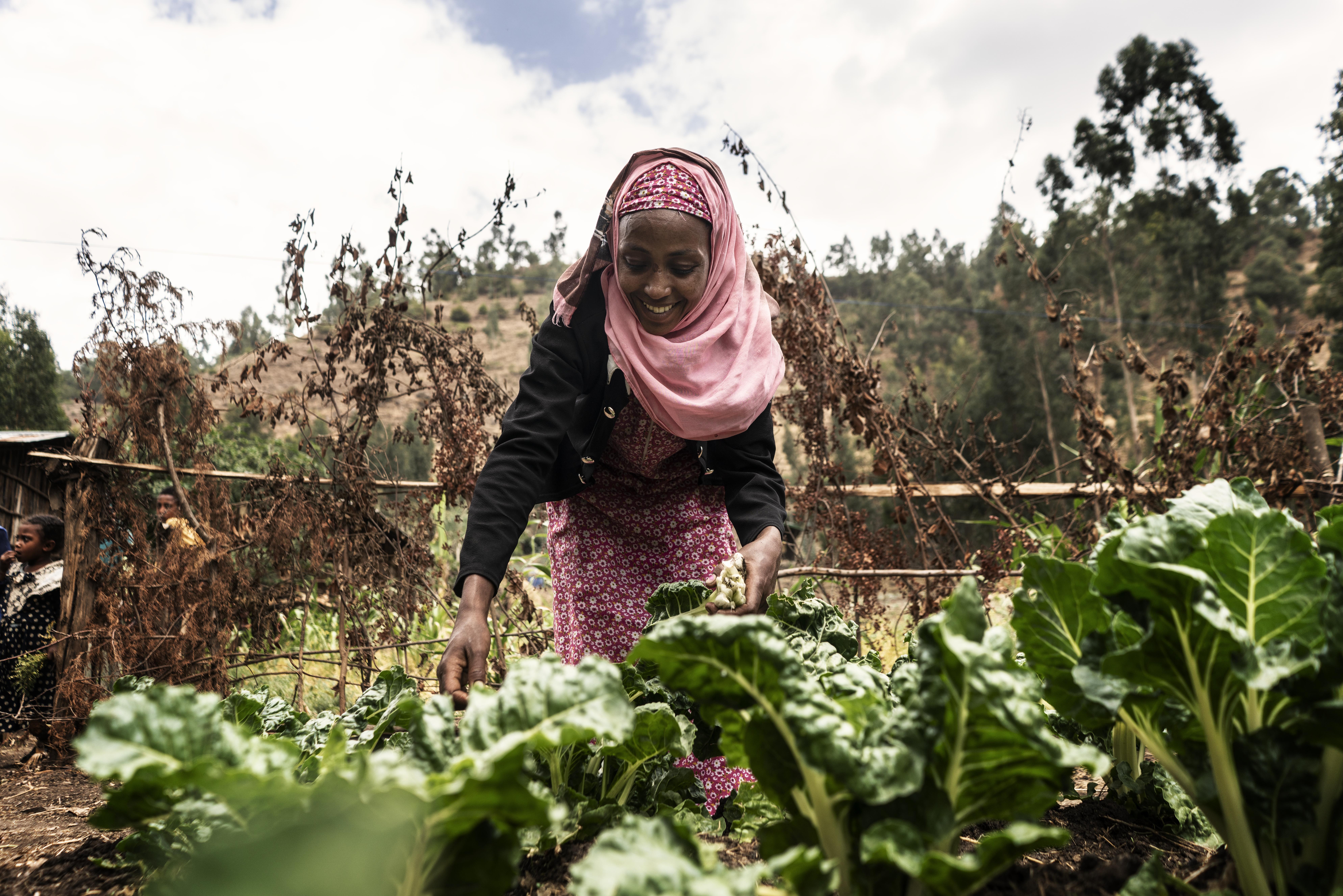 Merima Adem picking vegetables outside home