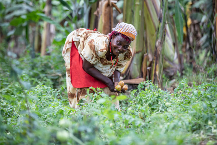 A woman harvesting crops from her farm