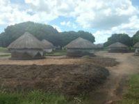The village of Olinga