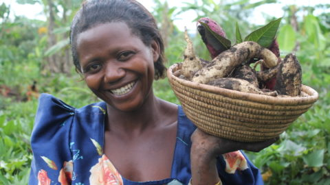 Mary with her sweet potato harvest