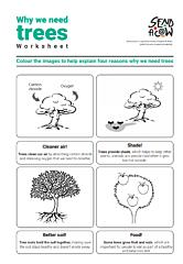 Colouring tree worksheet thumbnail 1