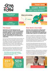 Inka Nziza project summary