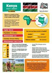 Kenya Fact Sheet Capture