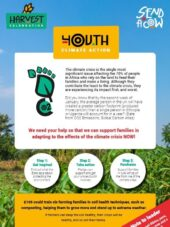 Youth Harvest Activity