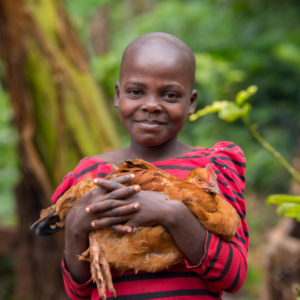 A little girl holding a chicken in her arms