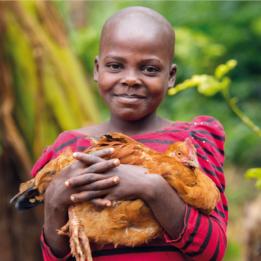 Card A Chicken