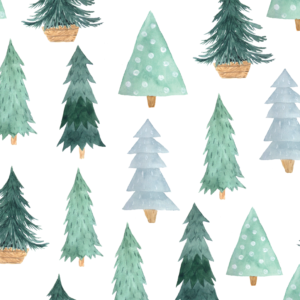 Card B Trees