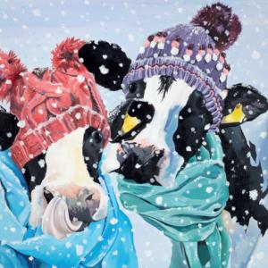 Card D Cows